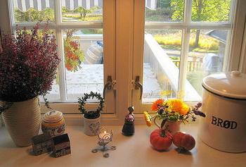 Какие окна лучше - деревянные или пластиковые